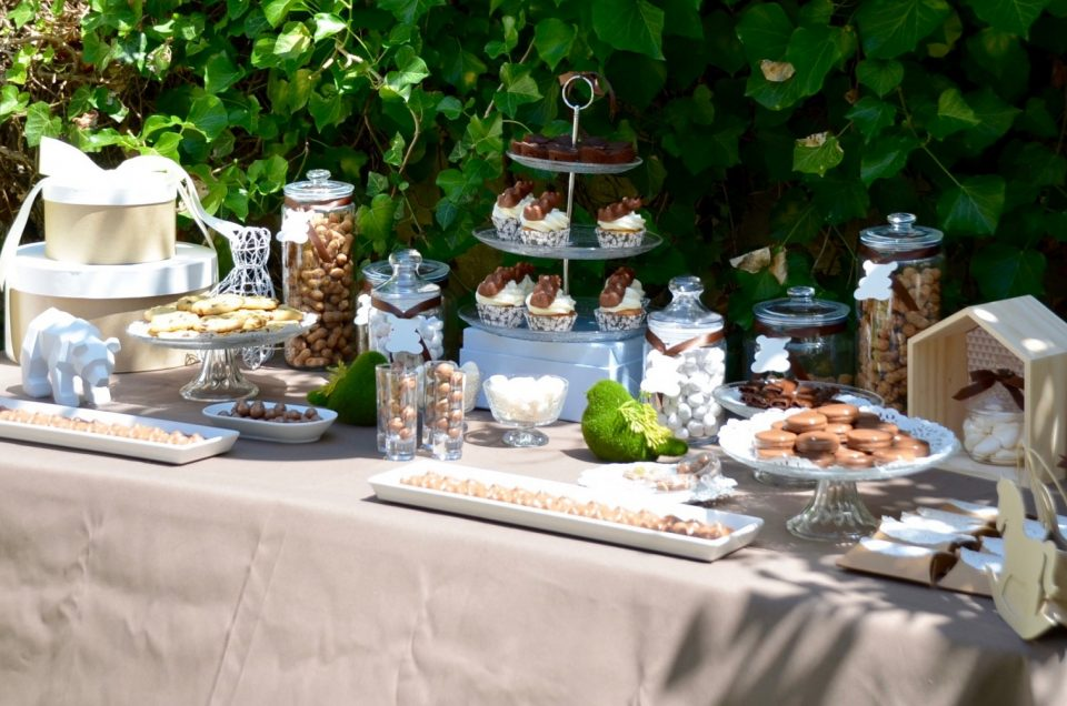 Baby Shower Petit Ours