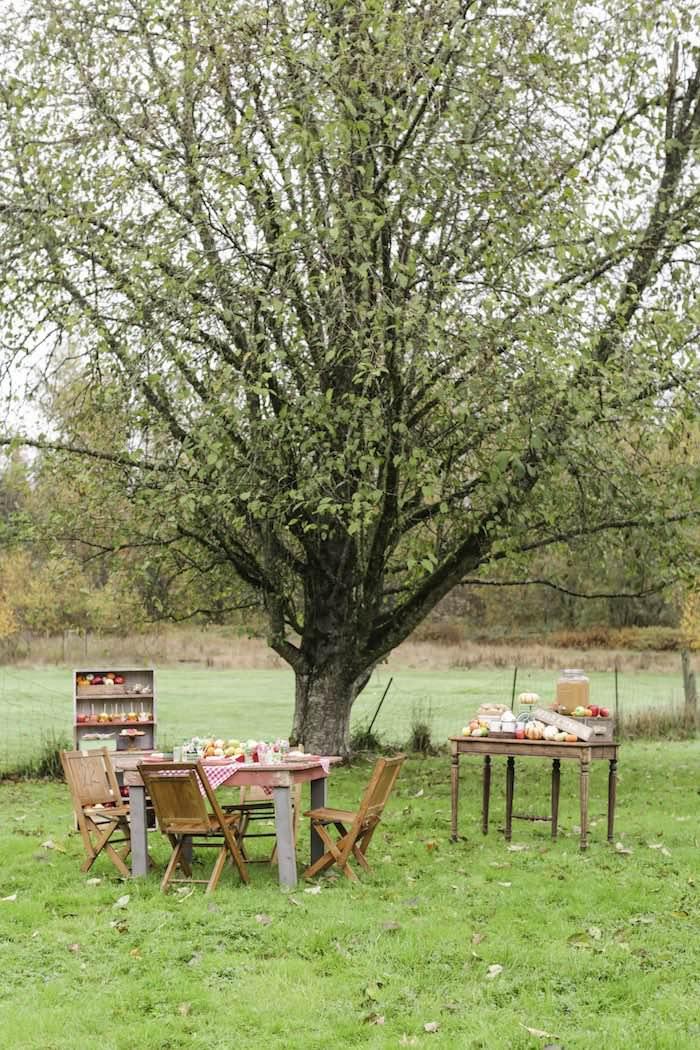 Goûter à la pomme - Tables dressées dans le jardin