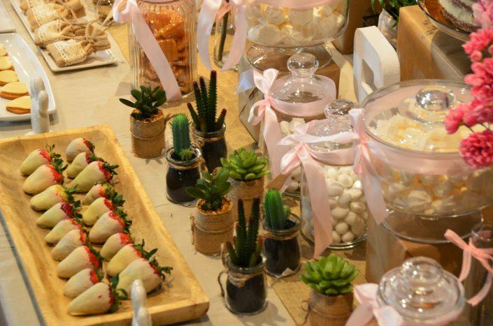 Candy Bar bohème chic par Studio Candy - fraises enrobées de chocolat blanc et petites succulentes