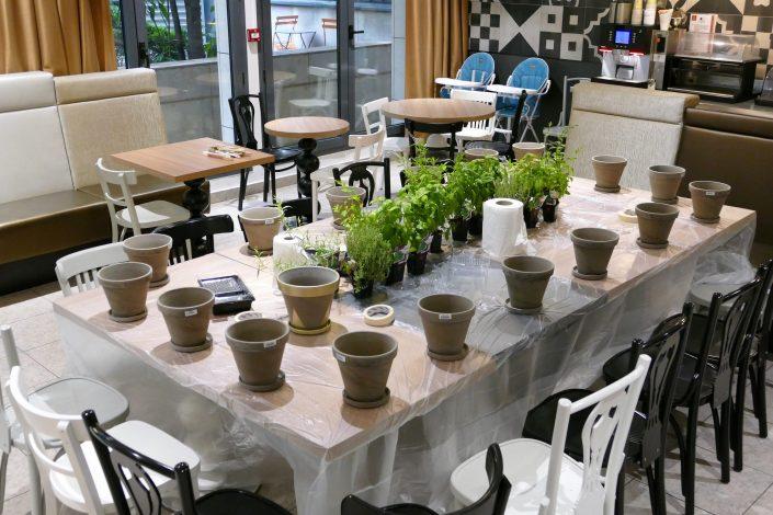Atelier créatif DIY pour les clients Adagio : customisation de pots en terre cuite et rempotage de plantes aromatiques