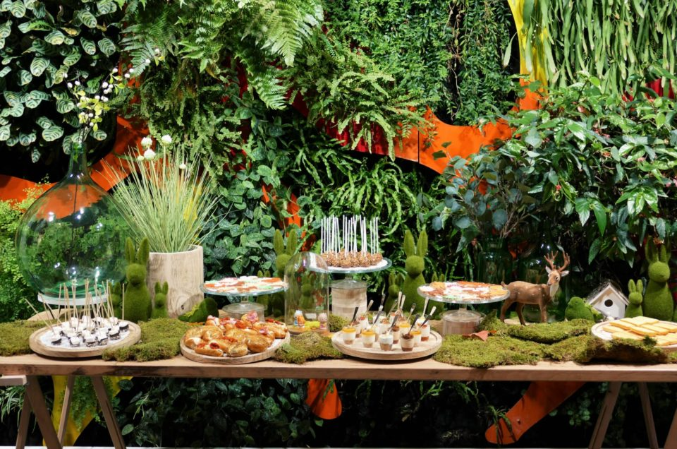 Table nature / green / végétale